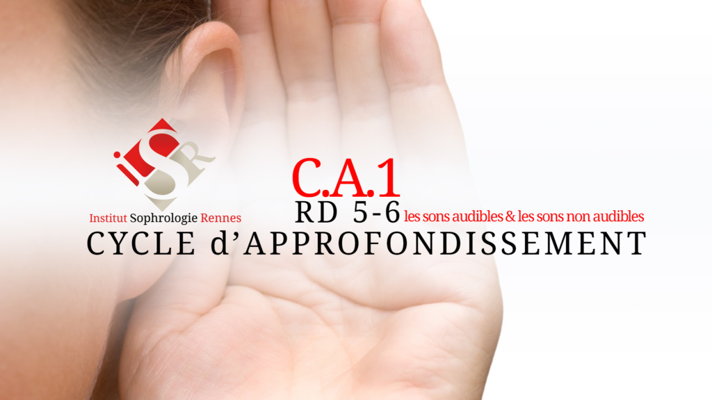 C.A.1 : Les sons audibles & les sons non audibles