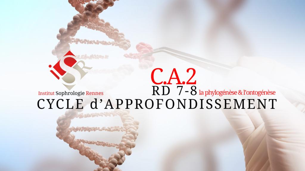 CA2 - ISR